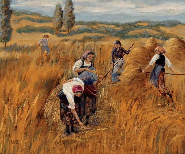 Gleaners of Provence - 16x20 - oil